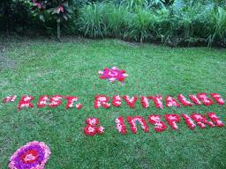 health practitioner retreat Bali Gill Stannard