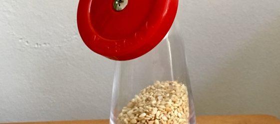 recipe gomashio Gill Stannard naturopath