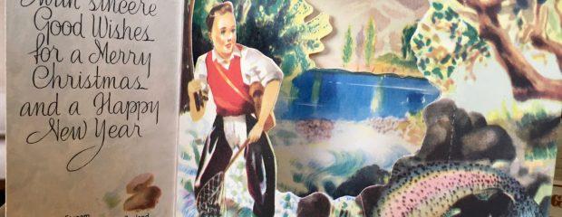 Christmas health Gill Stannard naturopath Sydney