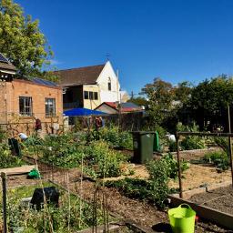 garden body health