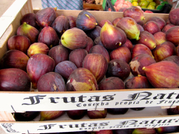 figs in season March Sydney naturopath