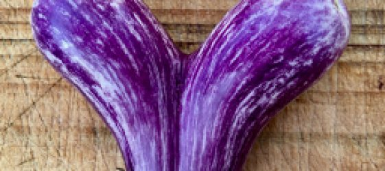 eggplant naturopath seasonal food australia