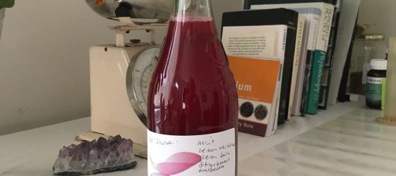 bottle of red berry wild soda made by sydney naturopath