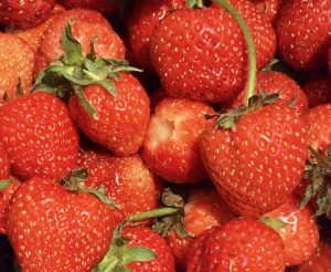 strawberries with green hulls