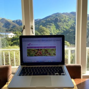 open laptop on desk looking out windows view green hills coverened in New Zealand native bush with blue sky