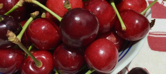 light and dark cherries in a blue bowl with blue rim on red and white background